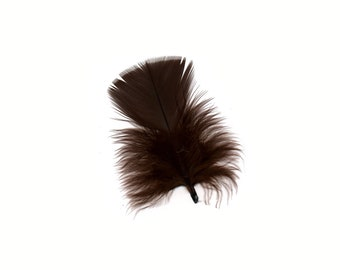 Turkey Feathers, Brown Loose Turkey Plumage Feathers, Short T-Base Body Feathers for Craft and Fly Fishing Supply ZUCKER®