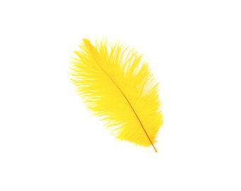 "12 GOLD Ostrich Feathers 9-12"" Perfect for Feather Small Feather Centerpieces, Party Decor, Millinery & Costume Design ZUCKER®"