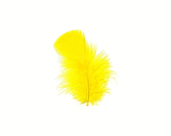 Turkey Feathers, Yellow Loose Turkey Plumage Feathers, Short T-Base Body Feathers for Craft and Fly Fishing Supply ZUCKER®