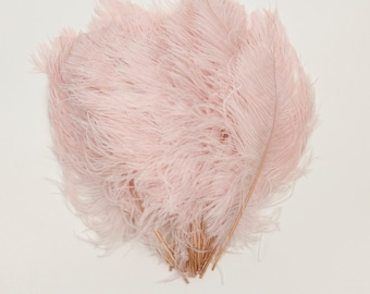 """Pink Champagne Ostrich Feather Tips, 15-18"""" Ostrich Tails 25 Pieces for Millinery & Floral Design, DIY Costume, Carnival, Mardi Gras ZUCKER®"""
