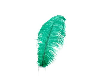 "12 EMERALD 17""+ Ostrich Feathers 1DZ - Perfect for Large Feather Centerpieces, Party Decor, Millinery, Carnival & Costume Design ZUCKER®"