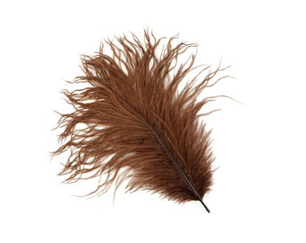 "12 BROWN Ostrich Feathers 9-12"" Perfect for Feather Small Feather Centerpieces, Party Decor, Millinery & Costume Design ZUCKER®"
