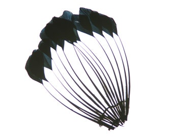 Feather Pads, Black Dyed Stripped Duck Center Fan, Stripped Duck Cochette Center Fan for Jewelry Design, Arts and Crafts Supplies ZUCKER®