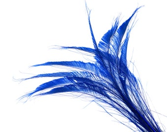 "Bleach Dyed Peacock Sword Feathers 10 to 100 Pieces 15-25"" ROYAL Blue, Floral Decor, Millinery, Jewelry Design ZUCKER® Sanitized in USA"