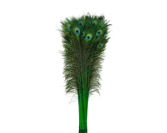 Green Dyed Peacock Feathers, 25-40 inches Stem Dyed Peacock Tail Feathers, Peacock Tail Feathers with Large Iridescent Eyes ZUCKER®