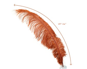 "Ostrich Feathers, Copper Ostrich Feather Spads 18-24"", Centerpiece Floral Supplies, Carnival & Costume Feathers ZUCKER®"