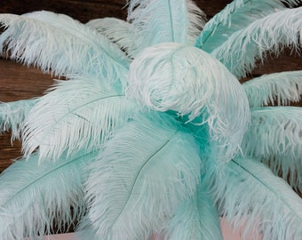 "Ostrich Feathers 17-20"" MINT, 1 to 25 pcs, Ostrich Plumes, Carnival Samba, Ostrich Drab, Mardi Gras, Centerpieces, Feather Fan, ZUCKER® USA"