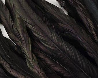 "12-14""Rooster Coque Tail Feathers, Black Iridescent Dyed Rooster Feathers, Long Rooster Feathers 25 pieces Jewelry & Art Supply ZUCKER®"