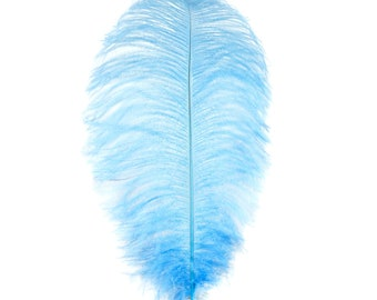 "12 SKY 17""+ Ostrich Feathers 1DZ - Perfect for Large Feather Centerpieces, Party Decor, Millinery, Carnival & Costume Design ZUCKER®"