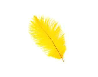 "GOLD Bulk 9-12"" Ostrich Feathers 1/4LB - For Feather Centerpieces,Party Decor,Millinery,Carnival,Fashion & Costume Design ZUCKER®"