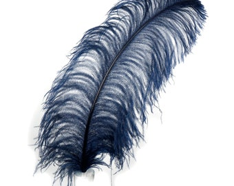 "Large Ostrich Feathers,1 Piece 17-25"" Prime Ostrich Femina Wing Plumes, NAVY, Hat Feathers, Floral Centerpiece,Carnival Feathers ZUCKER® USA"