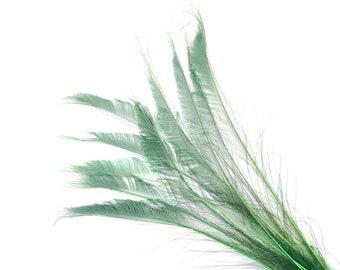 "Bleach Dyed Peacock Sword Feathers 10 to 100 Pieces 15-25"" CELEDON - Floral Decor, Millinery, Jewelry Design ZUCKER® Dyed & Sanitized in USA"