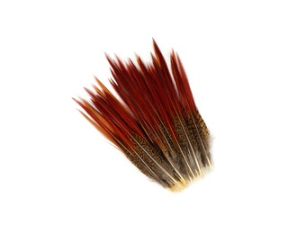 "Golden Pheasant Feathers, 100PCS 6-8"" Natural  Pheasant Red Tip Loose Feathers For Crafting and Art Supplies ZUCKER®"
