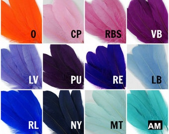 BULK 6-8 inch Loose Dyed Goose Pallet Feathers - For DIY Arts ,Crafts, Dream Catchers, Millinery, Carnival, Costume & Cosplay Design ZUCKER®