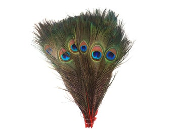 "RED 100pcs Bulk 8-15"" Stem Dyed Peacock Tail Feathers - For Arts & Crafts, Floral Decor, Millinery and Jewelry Design  ZUCKER®"