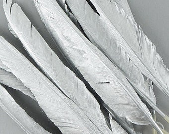 12 SILVER Gilded Goose Pointer Feathers - For Arts & Crafts projects, DIY Dreamcatchers, Costume Design and more ZUCKER®