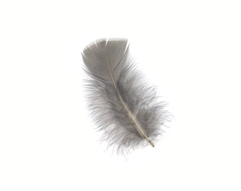 Turkey Feathers, Grey Loose Turkey Plumage Feathers, Short T-Base Body Feathers for Craft and Fly Fishing Supply ZUCKER®