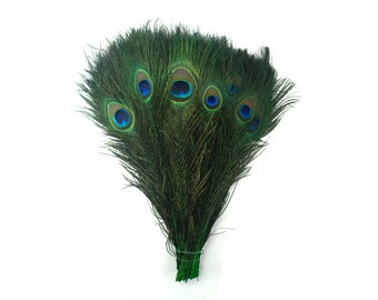 "KELLY 100pcs Bulk 8-15"" Stem Dyed Peacock Tail Feathers - For Arts & Crafts, Floral Decor, Millinery and Jewelry Design  ZUCKER®"