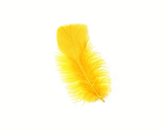 Turkey Feathers, Gold Loose Turkey Plumage Feathers, Short T-Base Body Feathers for Craft and Fly Fishing Supply ZUCKER®