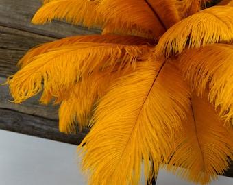 "Ostrich Feathers 17-20"" MARIGOLD, 1 to 25 pcs, Ostrich Plume, Carnival Samba, Ostrich Drab, Mardi Gras, Centerpiece, Feather Fan ZUCKER® USA"