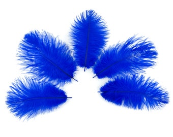 "Ostrich Feathers 4-6"" ROYAL, Mini Ostrich Drabs, Floral Bouquets, Boutonnieres, Small Centerpieces, Hat Trims, ZUCKER®"