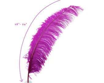 "Ostrich Feathers, Very Berry Ostrich Feather Spads 18-24"", Centerpiece Floral Supplies, Carnival & Costume Feathers ZUCKER®"