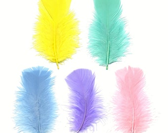 Turkey Feathers, Pastel Mix Loose Turkey Plumage Feathers, Short T-Base Body Feathers for Craft and Fly Fishing Supply ZUCKER®