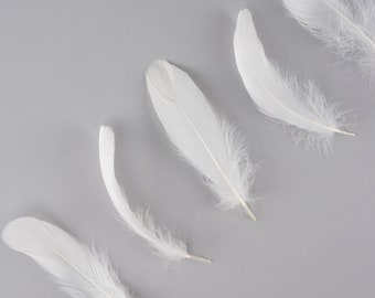 """Goose Nagoire Feathers, 4-6"""" White Loose Goose Nagoire Feathers, White Feathers, Small Feathers, Arts and Craft Supplies ZUCKER®"""