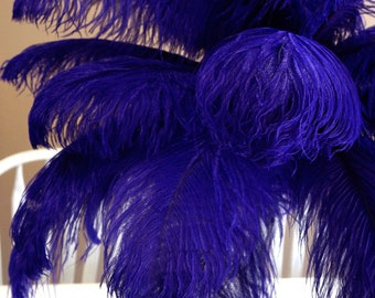 "Ostrich Feathers 17-20"" REGAL, 1 to 25 pcs, Ostrich Plumes, Carnival Samba, Ostrich Drab, Mardi Gras, Centerpieces, Feather Fan, ZUCKER® USA"
