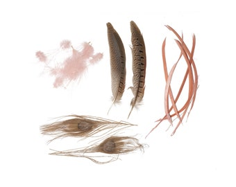 Peacock - Pheasant - Goose Mix - CHP - GIRD - N