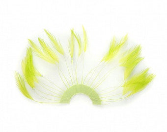 LIME Hackle Feather Trim - Hackle Plate Feather Trim with Beads for DIY Arts and Crafts, Millinery & Costume Design ZUCKER®