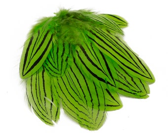 "Lime Green Silver Pheasant Plumage, Unique Feathers, 1 DOZEN  2-4"", Dyed Silver Pheasant Barred Plumage ZUCKER® Dyed & Sanitized USA"