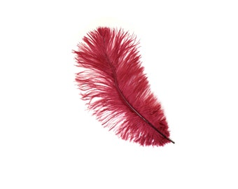 "12 BURGUNDY Ostrich Feathers 9-12"" Perfect for Feather Small Feather Centerpieces, Party Decor, Millinery & Costume Design ZUCKER®"