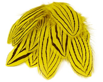 "Yellow Silver Pheasant Plumage , Unique Feathers, 1 DOZEN 2-4"", Dyed Silver Pheasant Barred Plumage ZUCKER® Dyed & Sanitized USA"
