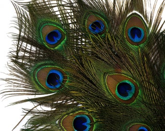 "Natural Peacock Feathers, 8-15"" Dark Green Peacock Bird Feathers, Green Feathers for Hats, Peacock Feathers for Wedding Decorations ZUCKER®"