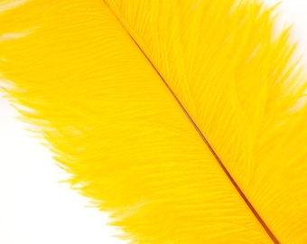 """GOLD 25 Ostrich Feathers 17""""- 20"""" - 25pc/pkg - Perfect for Feather Centerpieces,Party Decor,Millinery & Carnival Costumes ZUCKER®"""
