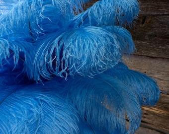 "Ostrich Feathers 17-20"" SKY Blue, 1 to 25 pcs, Ostrich Plumes, Carnival Samba, Ostrich Drab, Mardi Gras, Centerpieces, Fans ZUCKER® USA"