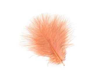 Turkey Feathers, Peach Loose Turkey Marabou Feathers, Short and Soft Fluffy Down, Craft and Fly Fishing Supply Feathers ZUCKER®