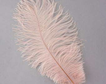 """CHAMPAGNE Bulk 13-16"""" Ostrich Feathers 1/4LB - For Feather Centerpieces,Party Decor,Millinery,Carnival,Fashion and Costume Design ZUCKER®"""