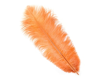 "12 CINNAMON 13-16"" Ostrich Feathers - Perfect for Medium Feather Centerpieces & Bouquets, Party Decor, Millinery and Costume Design ZUCKER®"