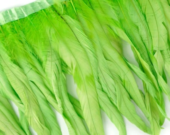 "10-12"" LIME Dyed Coque Feather Fringe 1YD - DIY Art Crafts, Carnival, Cosplay, Costume, Millinery & Fashion Design Feather Fringe ZUCKER®"