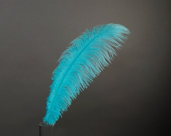 "12 LT.TURQUOISE 17""+ Ostrich Feathers 1DZ - Perfect for Large Feather Centerpieces, Party Decor, Millinery, Carnival, Costume Design ZUCKER®"