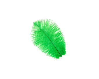 """KELLY Bulk 9-12"""" Ostrich Feathers 1/4LB - For Feather Centerpieces,Party Decor,Millinery,Carnival,Fashion & Costume Design ZUCKER®"""
