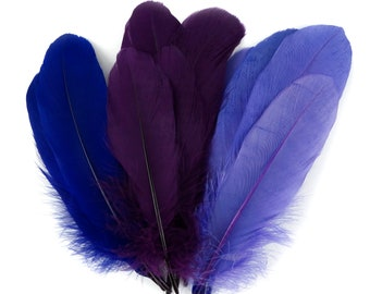 12pc SUGARPLUM Mixed Dyed Goose Pallet Feathers For DIY Arts , Crafts, Dream Catchers, Millinery, Carnival, Costume & Cosplay Design ZUCKER®