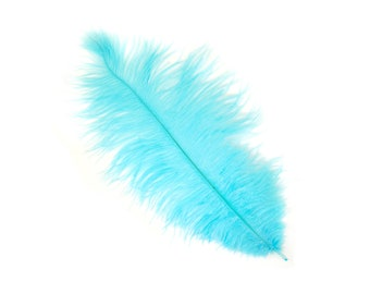 "12 LT.TURQUOISE 13-16"" Ostrich Feathers - Perfect for Medium Feather Centerpieces & Bouquets, Party Decor, Millinery, Costume Design ZUCKER®"
