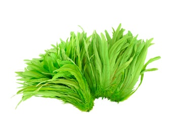 """Rooster Tail Feathers, LIME 12-14"""" Strung Bleach Dyed Coque Tails, Wholesale Feathers Bulk ZUCKER®"""