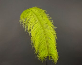 "LIME 25 Large Ostrich Feathers 17-25"" 25pc/pkg - For Feather Centerpieces, Party Decor, Millinery , Carnival , Costume ZUCKER®"