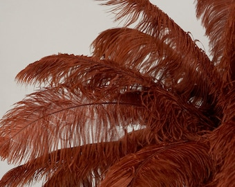"Large Ostrich Feathers 17-25"". 1 to 25 pieces,  Prime Ostrich Femina Wing Plumes COPPER Brown, Wedding Centerpiece, Carnival Feather ZUCKER®"