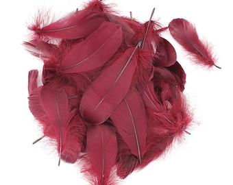 "Goose Nagoire Feathers, 4-6"" Burgundy Wine Loose Goose Nagoire Feathers, Small Feathers, Arts and Craft Supplies ZUCKER®"