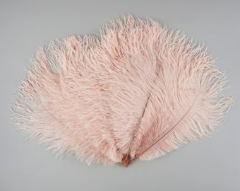 """Ostrich Feathers 9-12"""" Pink CHAMPAGNE, Ostrich Drabs, Centerpiece Floral Supplies, Carnival & Costume Feathers ZUCKER®Dyed and Sanitized USA"""